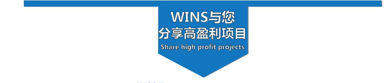 WINS与您分享高盈利项目